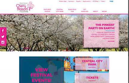 Park Group, Cherry Blossom Website